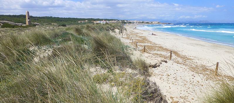 playa de arena con mar azul turquesa